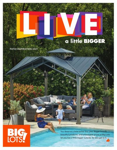 Big Lots Weekly Ad Flyer March 18 to August 15